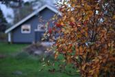 A summer house at Elsegårde Strand
