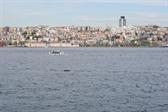 A tiny slice of Istanbul along the Bosphorus
