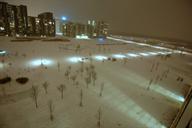 The park (Dec. 2010)