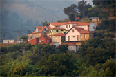 Houses along the Douro river