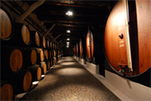 In the Sandeman Port wine cellars in Porto