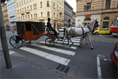 Prague is crawling with Segways, rickshaws, open carriage cars, and other ways for tourists to see the city