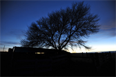 On the Coppock ranch at dusk
